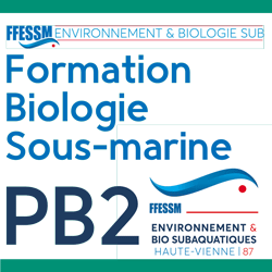 Formation niveau 2 de plongeur bio (PB2) 2019/2020