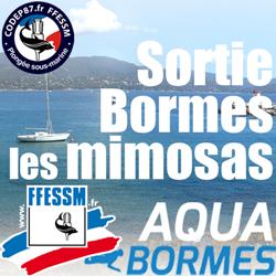 Sortie plongée Epaves & Tombants Bormes les Mimosas du 30 Juin au 7 Juillet 2018