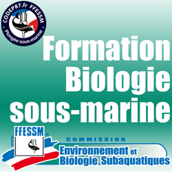 Formation Plongeur Bio 1