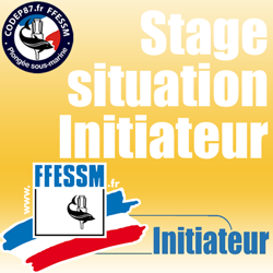Stage en situation Initiateur : Séance du Mercredi 12 Avril à 20H00 - Maison des Sports